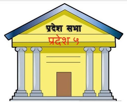 बिजनेसविहीन संसद्, अलमलमा सांसद