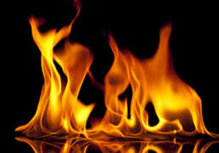 सुनसरीको तरकारी बजारमा आगलागी, ११ वटाभन्दा बढी पसल जलेर नष्ट